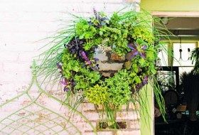 DIY Herb Garden Living Wreath