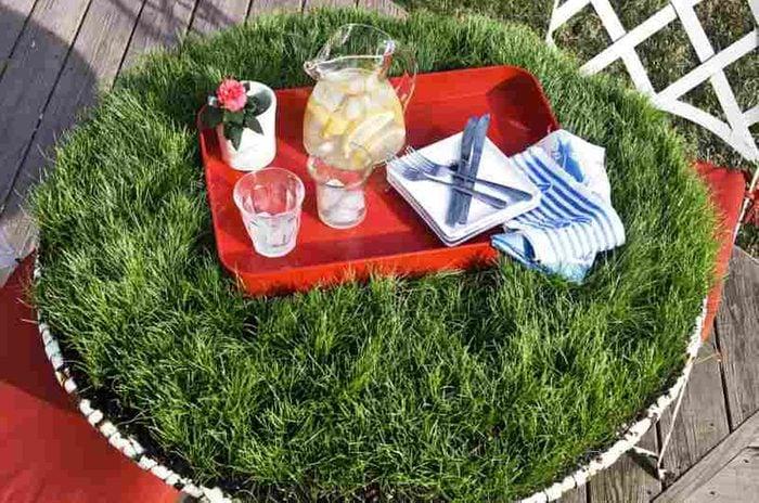 Grass DIY Picnic Table