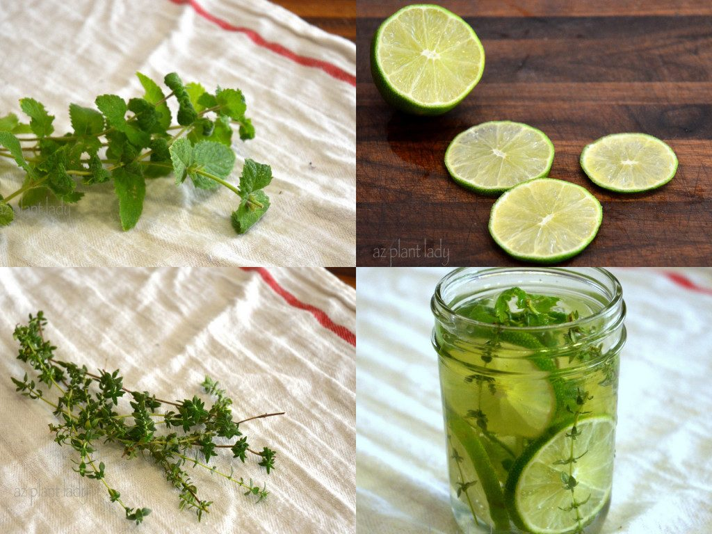 DIY Natural Air Freshener