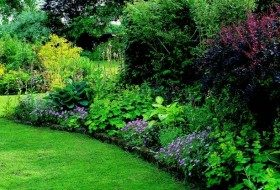 33 Easy Ideas for Shade Gardens