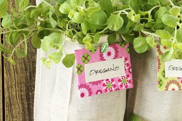 Shoe Organizer Herb Garden