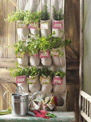 Shoe Organizer Herb Garden Vertical