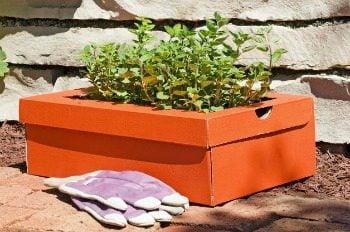 Shoebox Garden