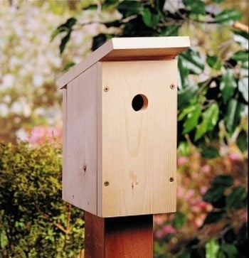 Build a One-Board DIY Birdhouse