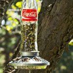 Turn a Glass Soda Bottle into a Homemade Bird Feeder