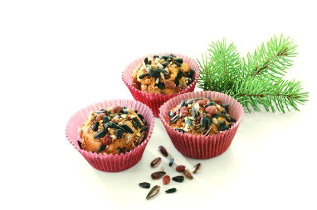 Suet Cupcakes