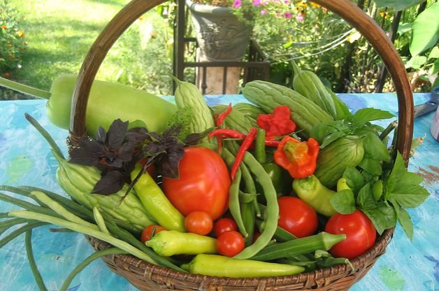 Gardening For Taste From The Fruit And Vegetable