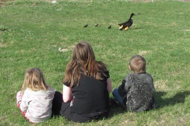 young birders