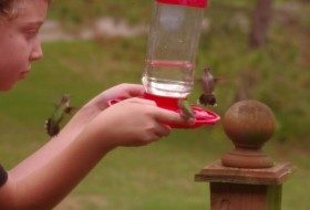 Introduce Kids to Birding