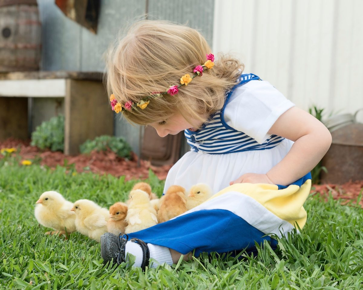 child with baby chicks