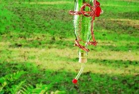Glass Bottle Homemade Hummingbird Feeder