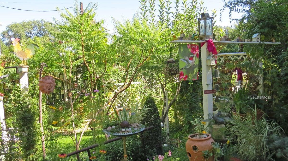 BotanicGardens-a1-CC,CO