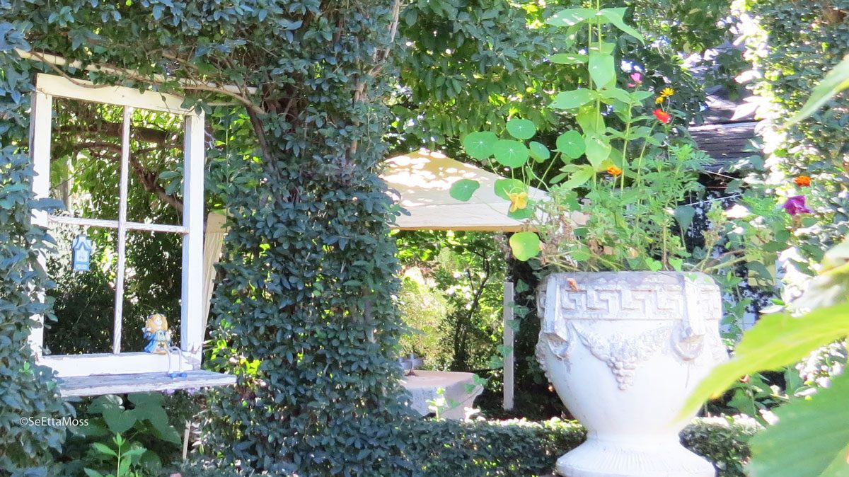 BotanicGardens-a7b-CC,CO