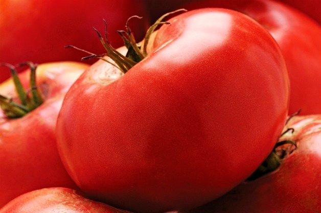 Top 10 Best Tomatoes to Grow: Grafted Brandywine