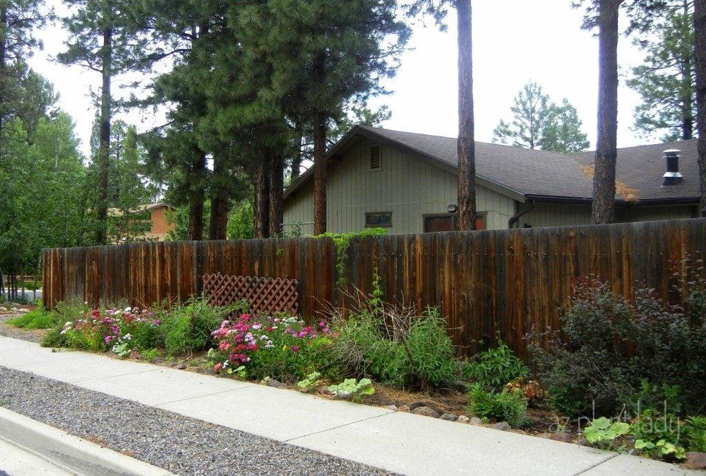 Perennial planting fence