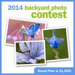 2014_backyardphotocontest_social