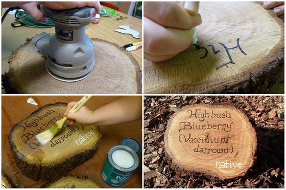 Tree Cookie Plant Marker Signs HowTo