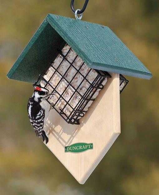 Gifts for Birders / Duncraft Feeder