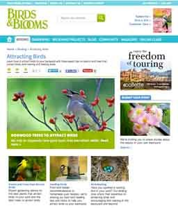 Attracting Birds page on the Birds & Blooms website.