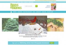 Attract birds with our new website