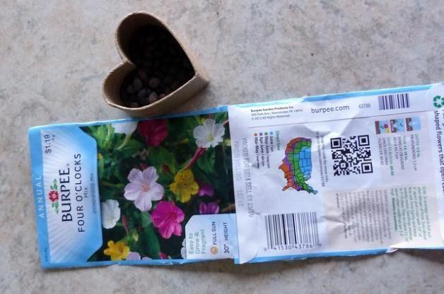 Seed Box Gifts Step 1