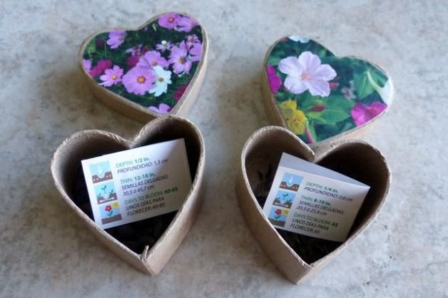 Seed Box Gifts Step 4