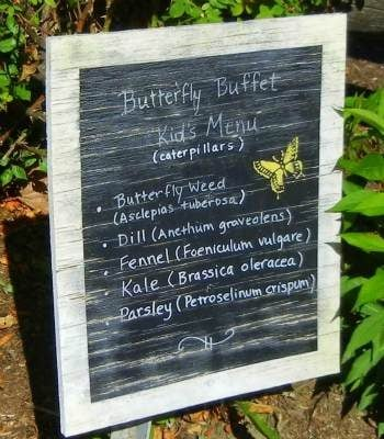 Butterfly_Garden_signage