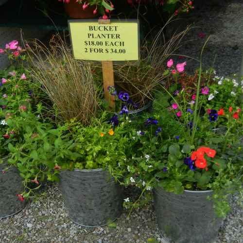 flower_gardening