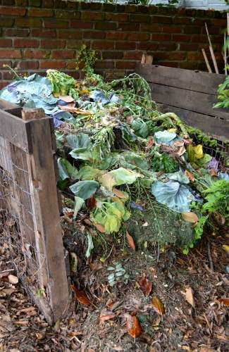 Backyard Mulch Pile : Backyard Garden An Edible Landscape to Inspire  Birds and Blooms