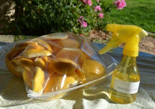 diy_grapefruit_cleaner-001
