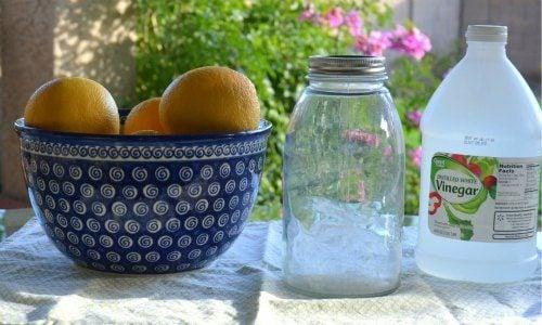 grapefruit cleaner ingredients