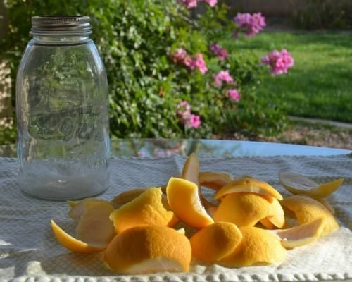 grapefruit peels for citrus cleaner
