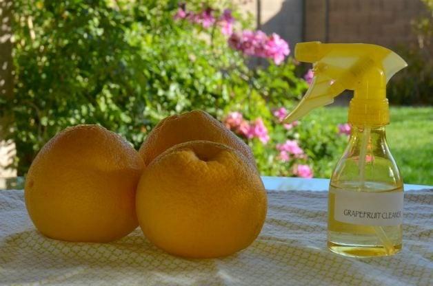 diy grapefruit cleaner