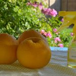 DIY Project: All-Natural Homemade Citrus Cleaner