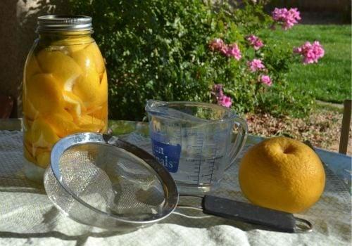 grapefruit_cleaner_diy