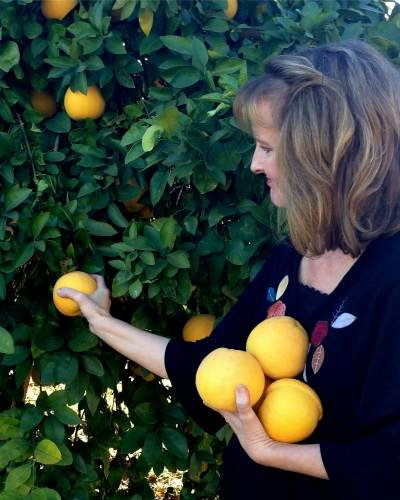 harvest_grapefruit_azplantlady_noelle_johnson