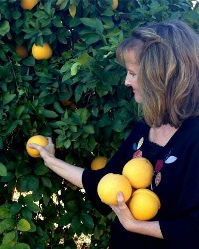 harvest_grapefruit_azplantlady_noelle_johnson