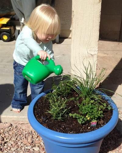child's_container_garden