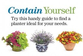 How to Choose a Container