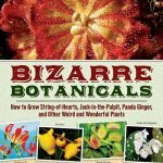 Top 10 Bizarre Plants