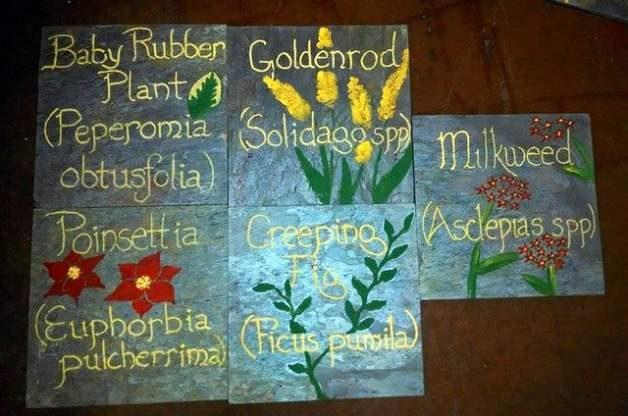 DIY Garden Plant Markers