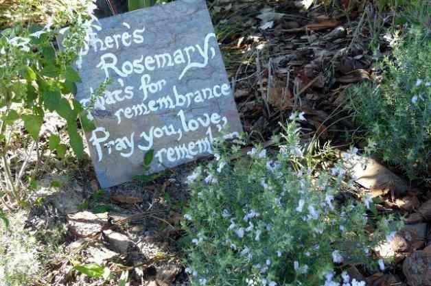 DIY Garden Signs