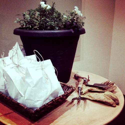 DIY Gift Bags for Plant Cuttings
