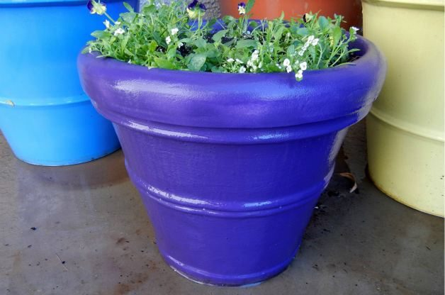 Paint_Plant_Containers_Bright_Colors