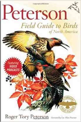 Birding for Beginners: Peterson Field Guide