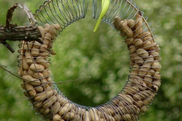 Recycled Garden Slinky Peanut Feeder