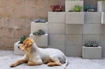 Gardening Made Easy: Alternative Gardening Ideas