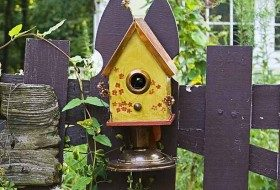 Birdhouse Guidelines