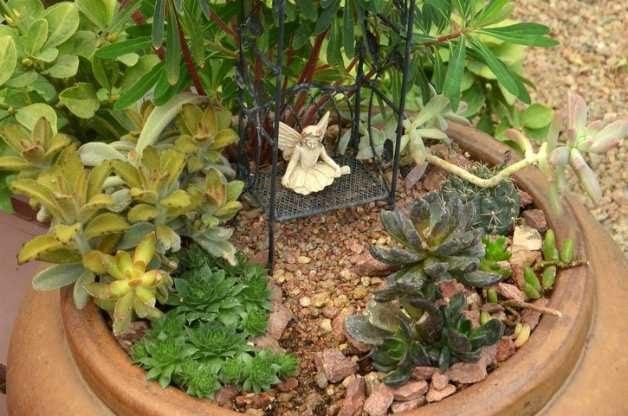 Succulent Fairy Garden 3