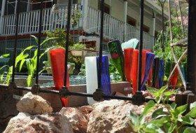 backyard garden adding color